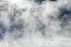 6_霧・氷
